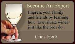 Become An Expert Wine Evaluator