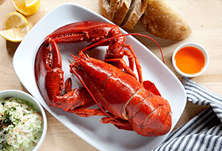 Boiled lobsters dish with bread and slaw